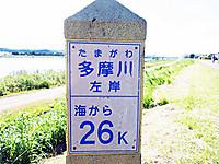 Dsc02835