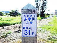 Dsc02852